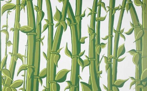 bamboo-85804-48025.1349851667.1280.1280.jpg