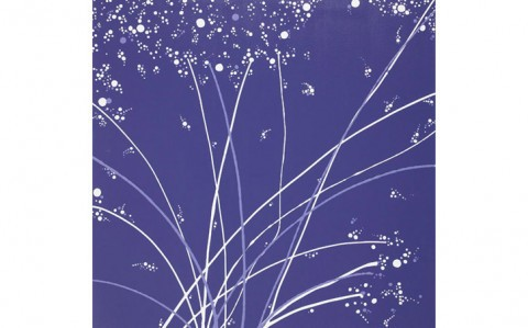 fireworks-72867-63342.1349851675.1280.1280.jpg