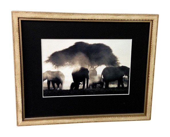 framed-elephants-picture.jpg