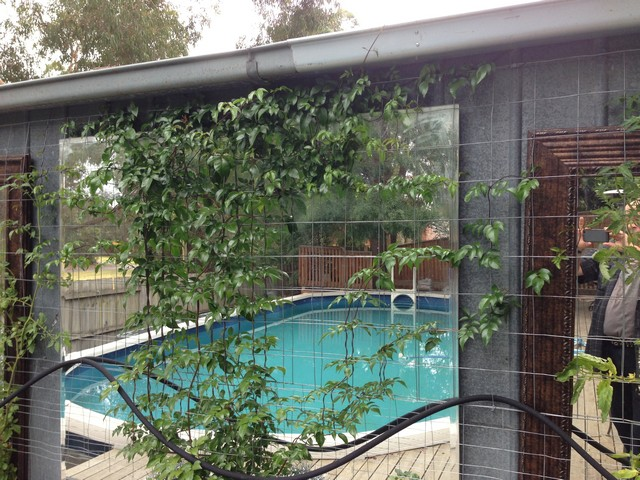 mirrors-in-front-of-neighbours-shed.jpg