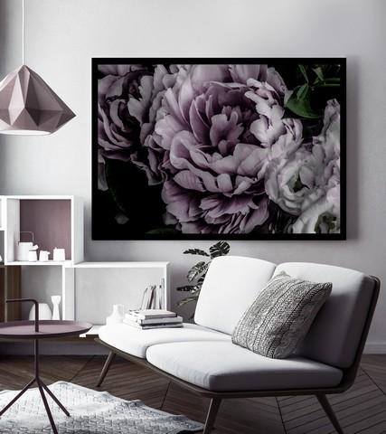 carnation-pink-in-situ-3-.jpg