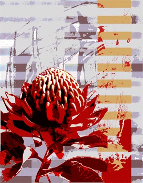 Bright colours of Australian flora, Waratah Light by Jan Neil, modern art, Print Decor Melbourne